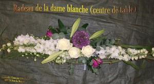 2011_7-6-radeau-dame-blanche-e-300x165